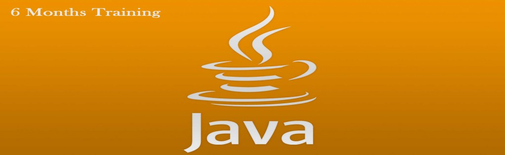 6 months Java training karnal